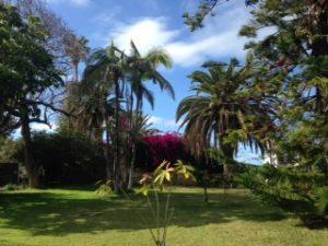 Paradiesgarten